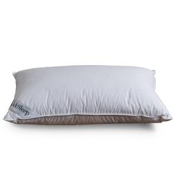 Soak&Sleep best pillow